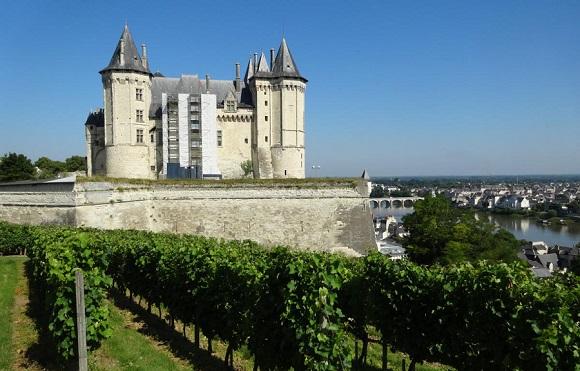 FR1-Chateau de Saumur + vines - GLK