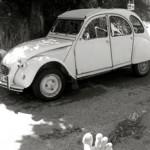 VNP: The street life of the Citroen 2CV